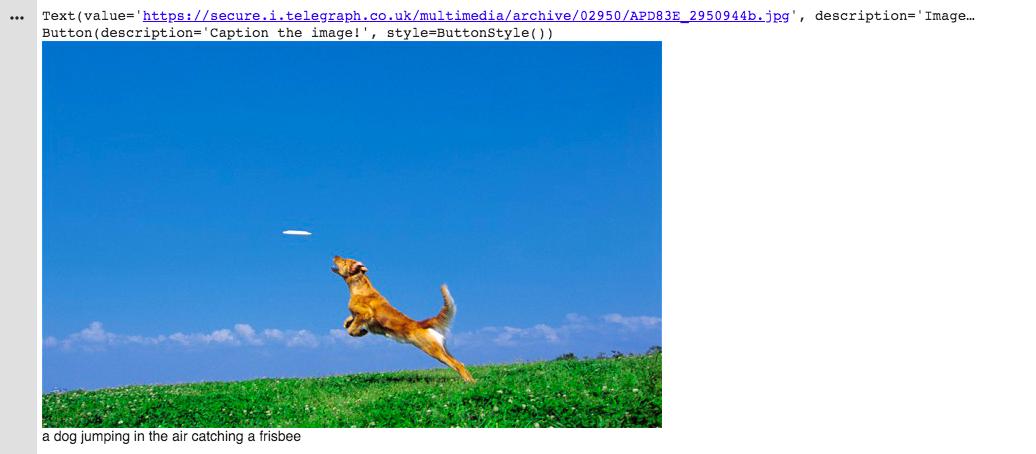 Pythia Image Captioning Example