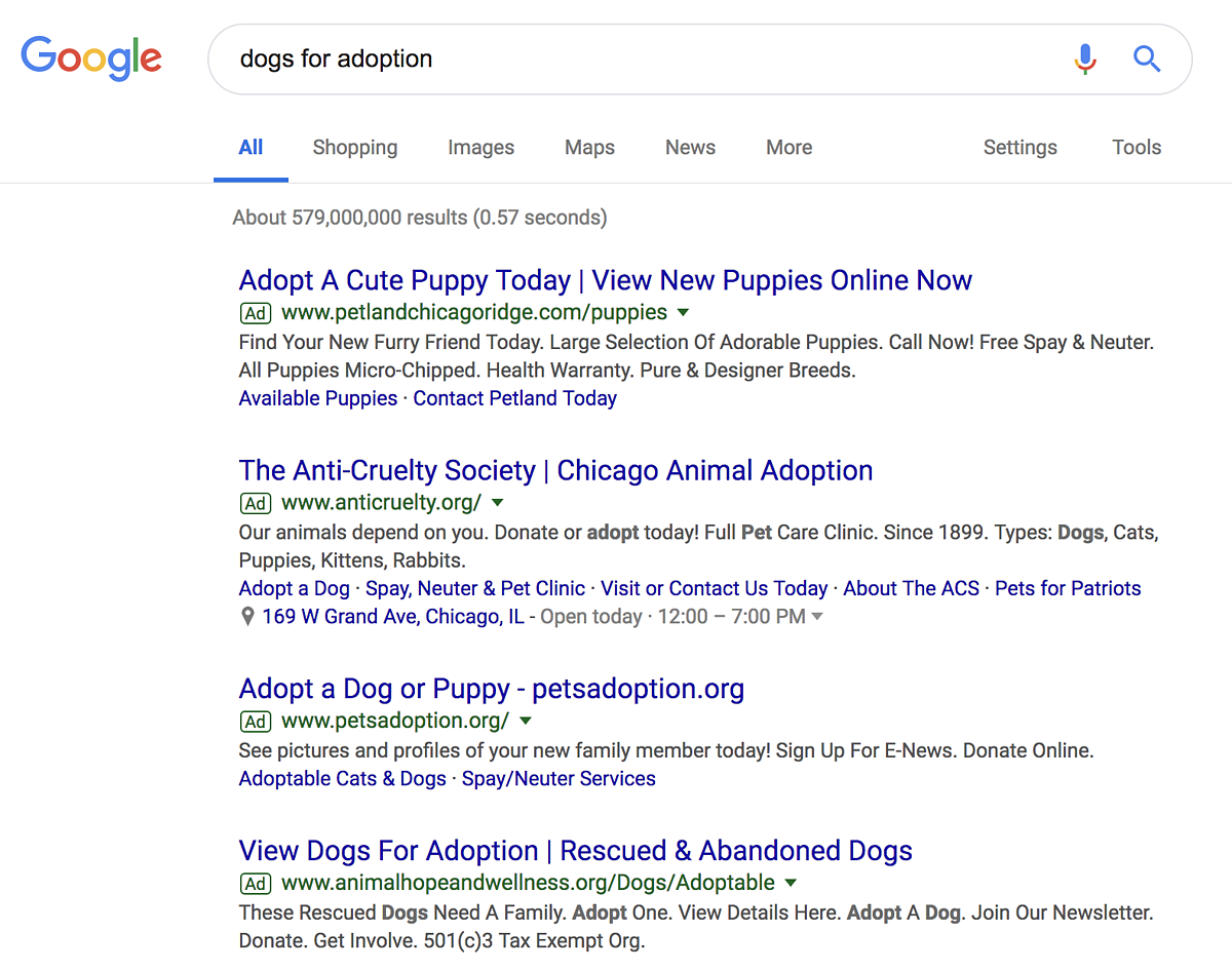 paid search advertising for dogs