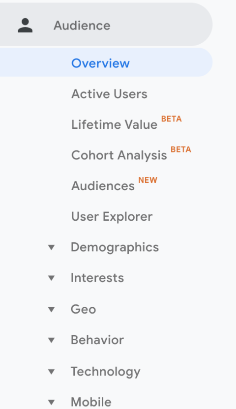 Google Analytics Insights